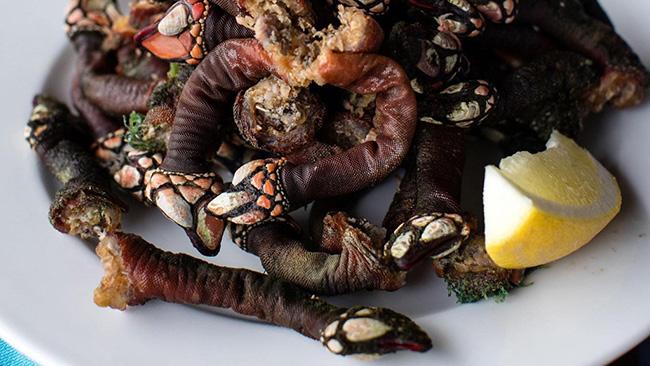 Đây là loại hải sản hiếm có và ngon nhất thế giới.