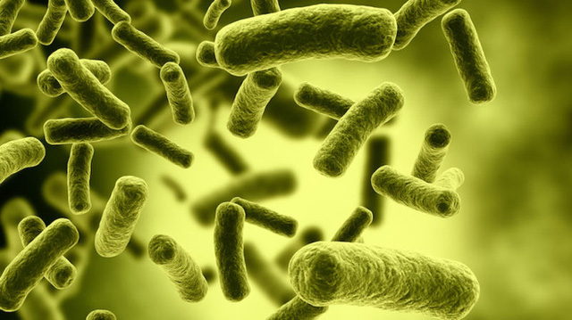 Ngộ độc Botulinum một lượng rất nhỏ có thể tử vong, muốn phòng tránh phải biết những điều sau - 1