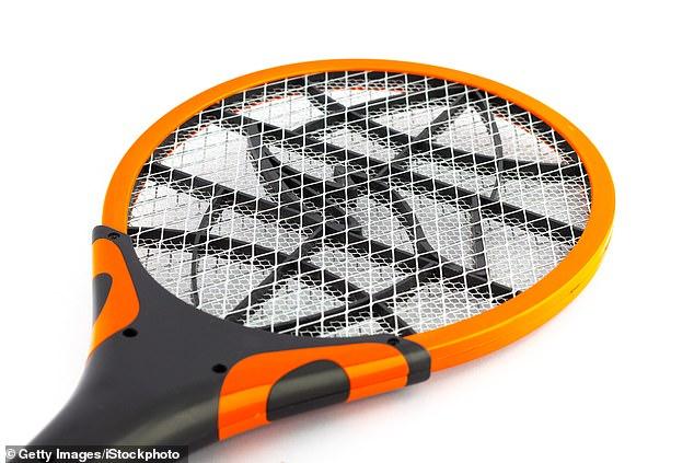 Dùng vợt bắt ruồi, không ngờ làm nổ tung căn nhà - 1