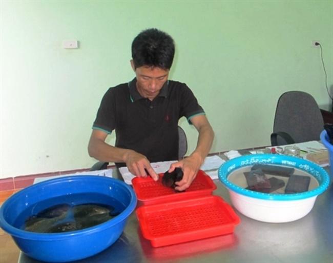 Chuyện lấy ngọc trai tự nhiên không phải là hiếm nhưng nuôi trai lấy ngọc ngay tại vườn là điều khá mới mẻ. Tuy nhiên, nhiều người Việt Nam đã chớp lấy thời cơ để có thể kiếm tiền tỷ cho gia đình.