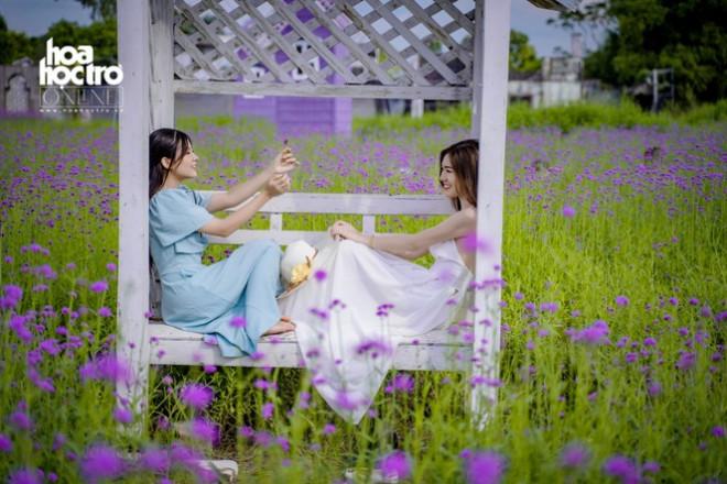 Giới trẻ Hà Nội rủ nhau check-in ở cánh đồng hoa oải hương rộng hàng chục nghìn mét vuông - 8