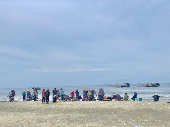 Ngư dân Hà Tĩnh trúng đậm cá cơm, mỗi ngày thu tiền triệu - 1
