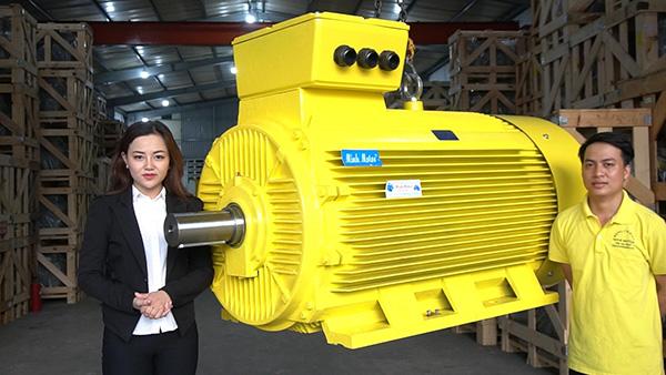 Minhmotor - Địa chỉ cung cấp motor điện 3 pha chất lượng, giá tốt - 1