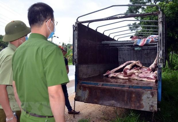 Gần 1 tấn lợn và thịt lợn dương tính với virus dịch tả lợn Châu Phi suýt được tuồn ra thị trường - 1