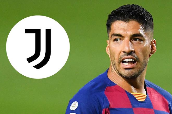Hé lộ sự thật vụ Suarez tới Juventus đổ bể: Gian lận thi cử, cảnh sát điều tra? - 1