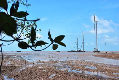Nhà máy điện gió trên biển sắp phát điện - 1