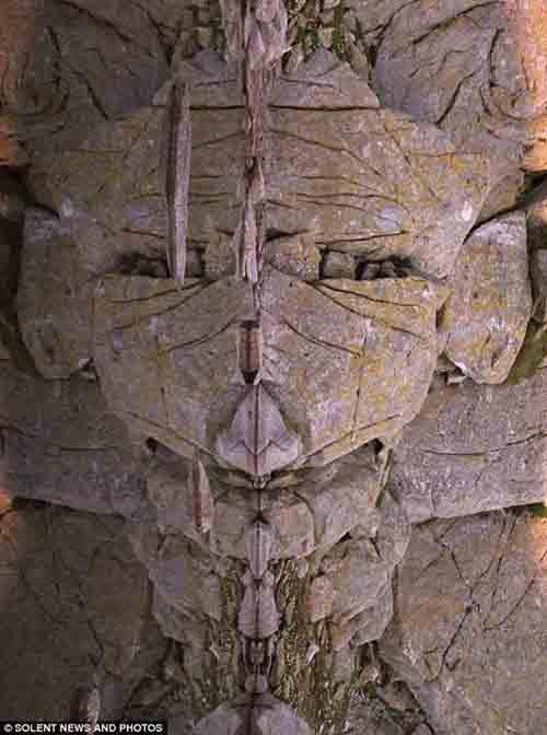 Khuôn mặt bí ẩn phản chiếu trên núi đá - 1