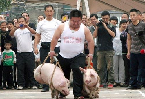 Xách lợn... chạy đua - 1