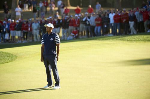 Tiger Woods xin lỗi ĐT Ryder Cup Mỹ - 1