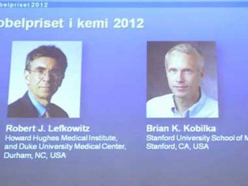 Nobel hóa học 2012 thuộc về người Mỹ - 1