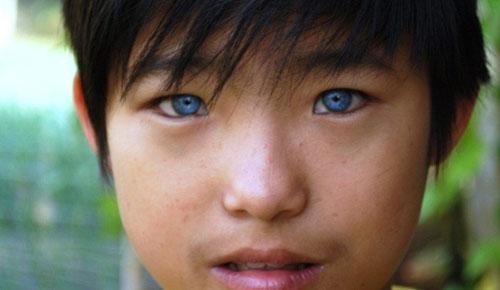 Cậu bé có đôi mắt búp bê ở Đà Lạt - 1