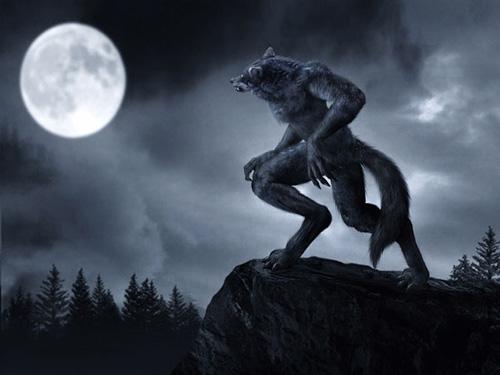 Bí ẩn huyền thoại người sói - 1
