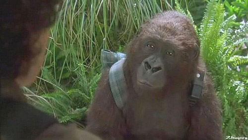 Trailer phim: Congo - 1