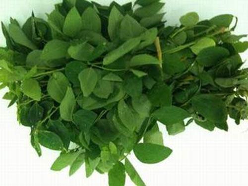 Rau cải, rau ngót dẫn đầu nguy cơ ngộ độc - 1