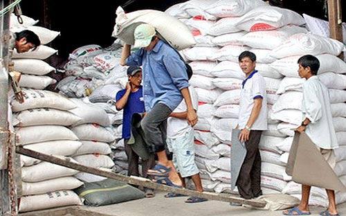 Xuất khẩu gạo Việt Nam phá kỷ lục 2011 - 1