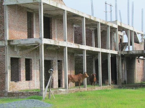 Hà Nội: Kiểm tra các trường học bỏ hoang - 1