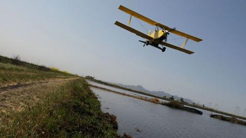 Bolivia: Ném 1 triệu USD qua cửa máy bay - 1