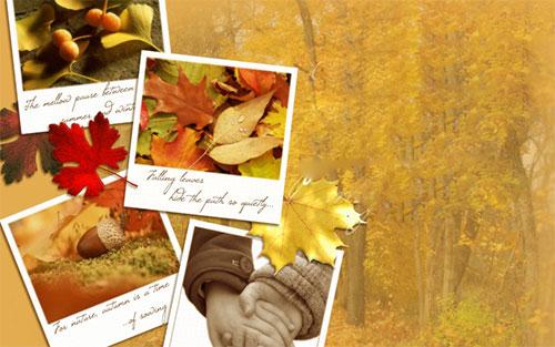Thơ tình: Mùa lá rụng - 1
