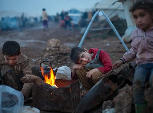 Syria: Dân đạo Hồi ở chiến địa được ăn thịt chó - 1