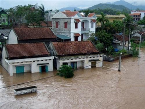 Quảng Ninh xót xa hậu bão - 1