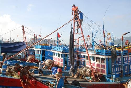 Hơn 4600 ngư dân lênh đênh ở vùng biển nguy hiểm - 1