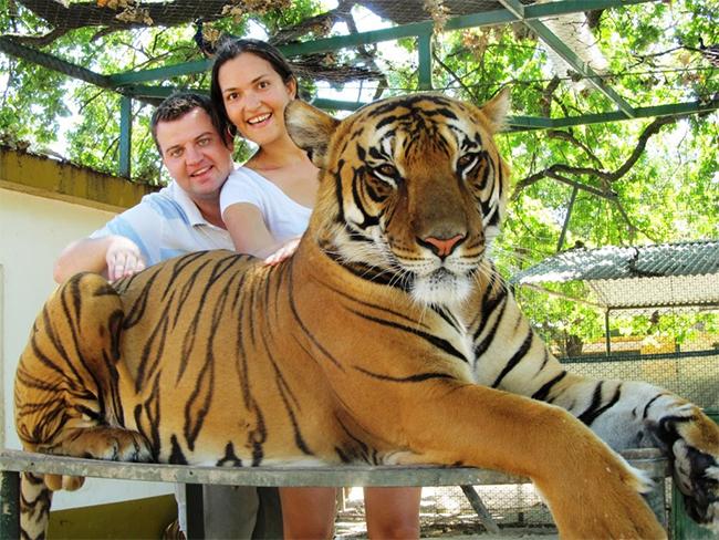 Tại sở thú Lujan ở Buenos Aires, du khách có thể thoải mái ôm các loài động vật nguy hiểm