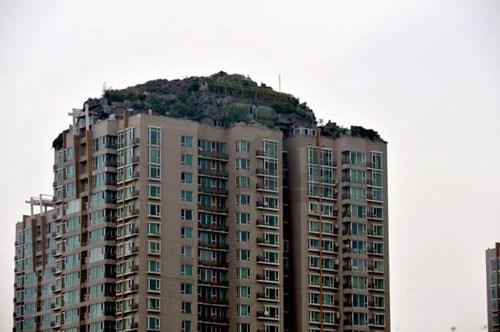 Đỉnh núi kỳ lạ trên nóc chung cư - 1