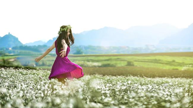 Bên những cánh đồng dã quỳ rực rỡ, là một màu trắng tinh khôi của hoa cải