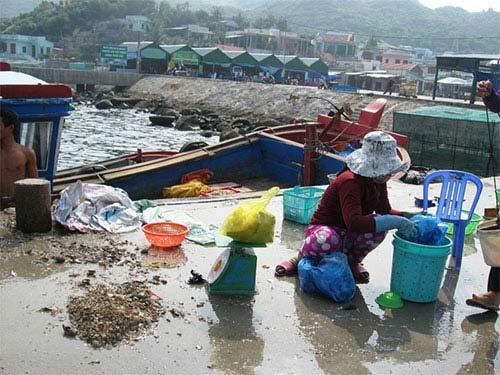 Khánh Hòa: Đảo du lịch ngập rác - 1