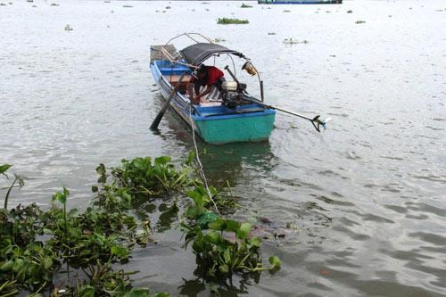 Thi thể cô gái tay đeo túi xách nổi trên sông Sài Gòn - 1