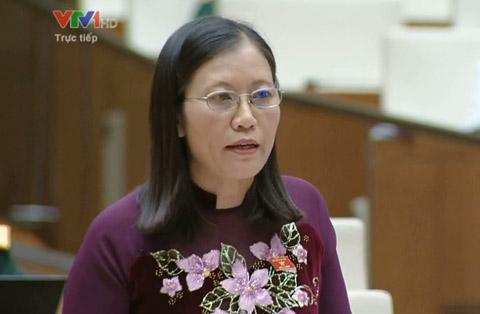 """Đại biểu QH: Bao giờ Việt Nam """"tốt nghiệp"""" ODA? - 1"""