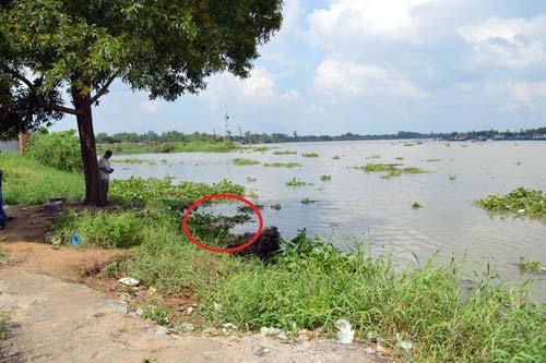 Đi đánh cá, phát hiện thi thể bé gái trên sông Sài Gòn - 1