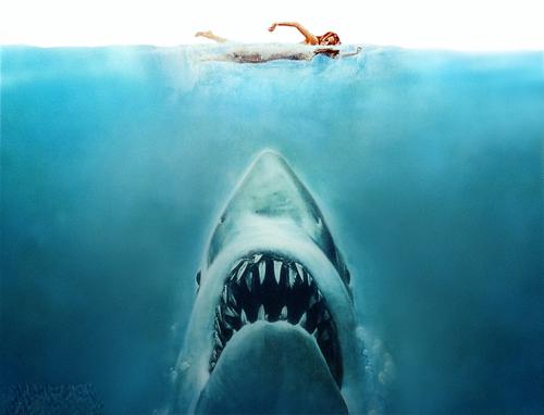 "Nhạc phim ""Jaws"" 1975, viết bởi John Williams - 1"