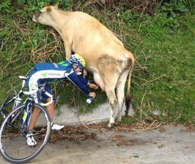 Hành động bá đạo của tay đua xe đạp