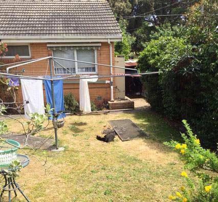Úc: Đang phơi đồ, bà cụ bị hố tử thần nuốt chửng - 1