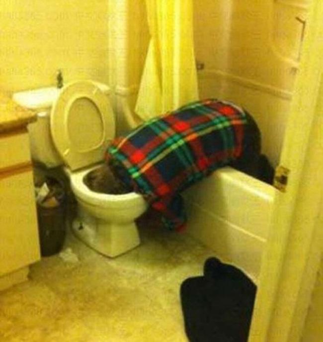 WC là điểm đến lí tưởng sau mỗi cuộc nhậu