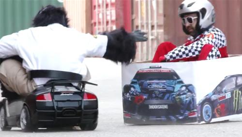 Video: Màn rượt đuổi ngoạn mục giữa khỉ và người - 1