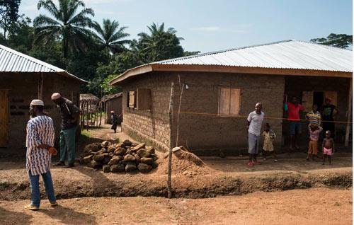 Không tin bác sỹ, bố ôm con nhiễm Ebola trốn vào rừng - 1