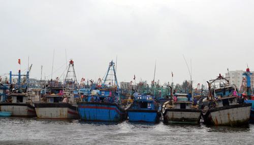 Cứu 8 ngư dân bị nạn trong bão Hagupit - 1