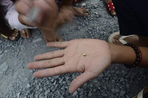"""Trà Vinh: Dân đổ ra đường nhặt """"vàng"""" - 1"""
