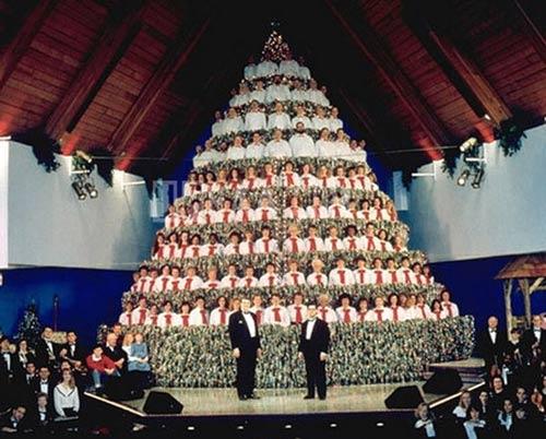 Bật cười với những cây thông Noel có 1-0-2 - 1