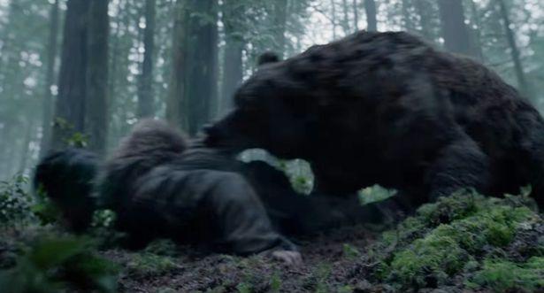 """Leonardo DiCaprio bị gấu """"sàm sỡ"""" trên phim trường - 1"""
