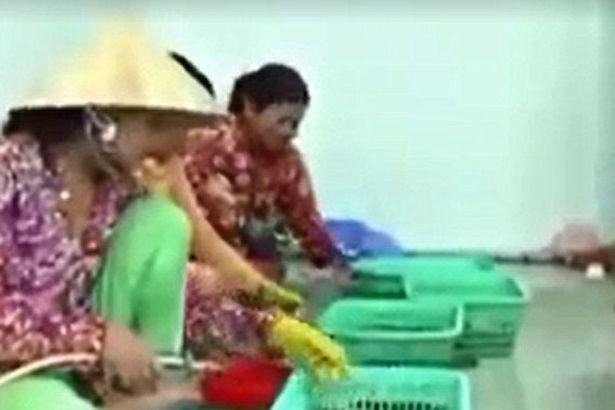 Vụ tôm sú Việt Nam bị tiêm tạp chất lên báo nước ngoài - 1