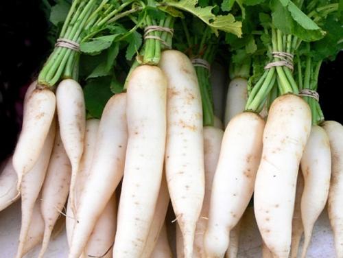 5 thực phẩm kỵ ăn với củ cải trắng vì dễ sinh bệnh - 1