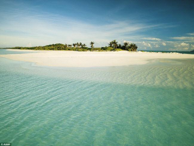 Đảo Pamalican nổi tiếng với những bãi biển hoang sơ, rừng cọ và nước biển trong tới mức không thể tưởng tượng.