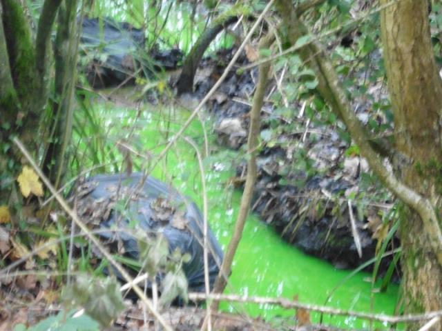 Anh: Suối bỗng chuyển màu xanh lá cây bí ẩn