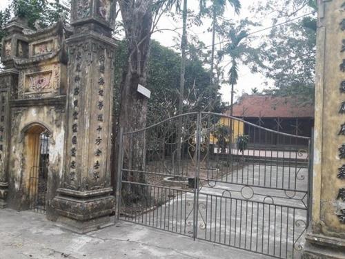 """Đại gia gỗ Đồng Kỵ hé lộ phiên đấu giá """"cụ"""" sưa 200 tuổi - 1"""