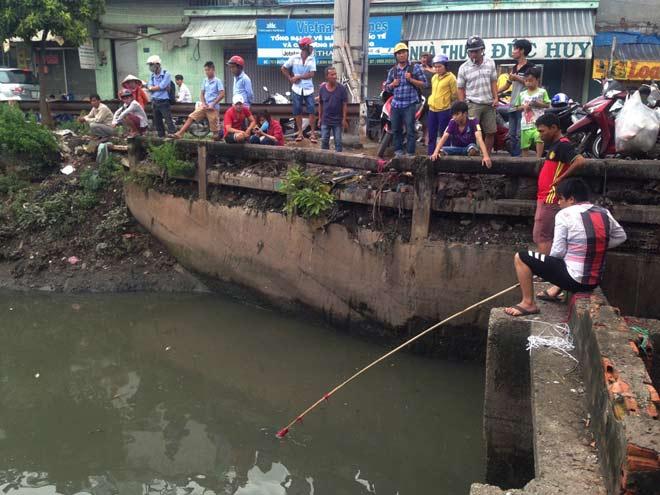 """Người lớn, trẻ nhỏ đua nhau vợt cá trên kênh """"chết"""" ở Sài Gòn - 1"""