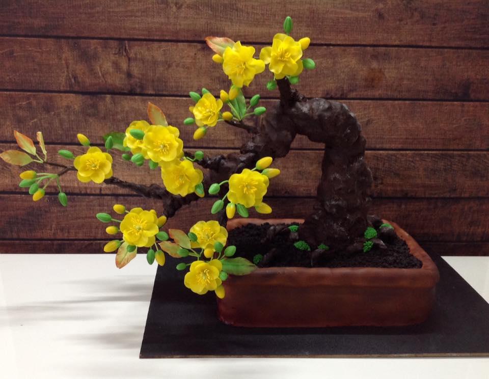 """Bạn sẽ """"sốc"""" khi biết cây mai bonsai này thực sự là gì - 1"""