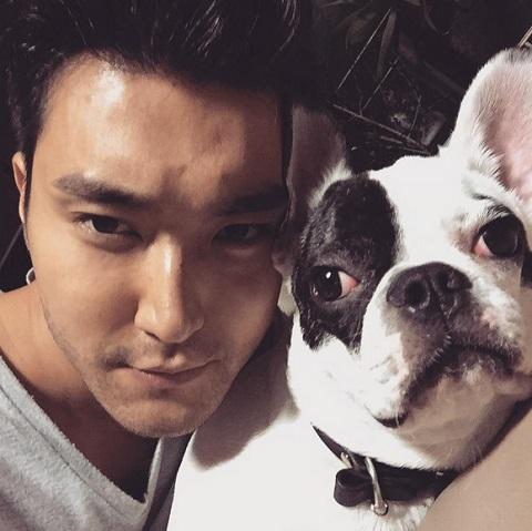 Hết vụ chó cưng cắn chết người, sao Hàn lại bị chỉ trích vì vạ miệng - 1